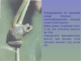 Рекордсменка по прыжкам среди лягушек - южноафриканская лягушка тонкотелый пр