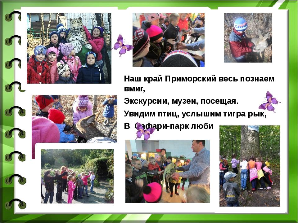 Наш край Приморский весь познаем вмиг, Экскурсии, музеи, посещая. Увидим птиц...