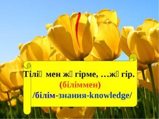 Тіліңмен жүгірме, …жүгір. (біліммен) /білім-знания-knowledge/