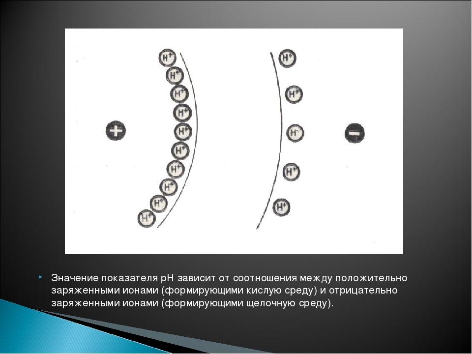 Значение показателя рН зависит от соотношения между положительно заряженными...