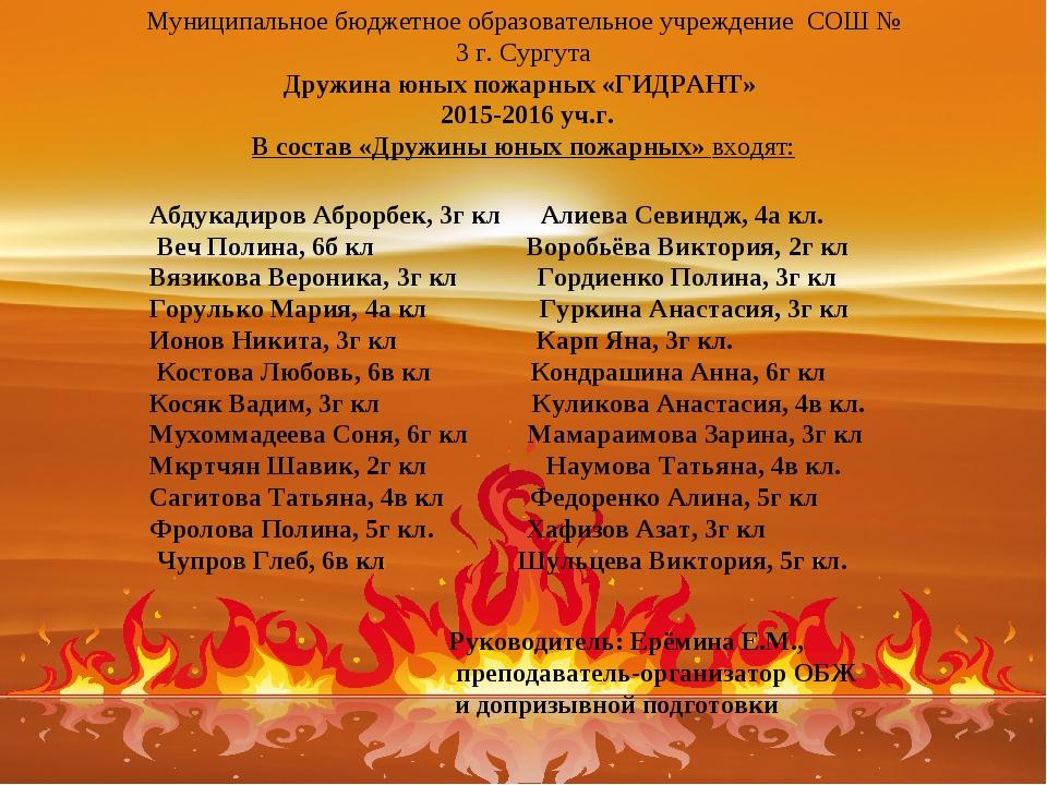 Муниципальное бюджетное образовательное учреждение СОШ № 3 г. Сургута Дружина...