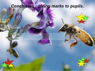 "Conclusion : giving marks to pupils. All pupils ''5"" ""4"" ""3"" ""2"" percentage 10"