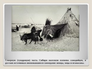 Северную (тундровую) часть Сибири населяли племена самодийцев, в русских исто