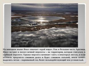 На ненецком языке Ямал означает «край мира». Как и большая часть Арктики, Яма