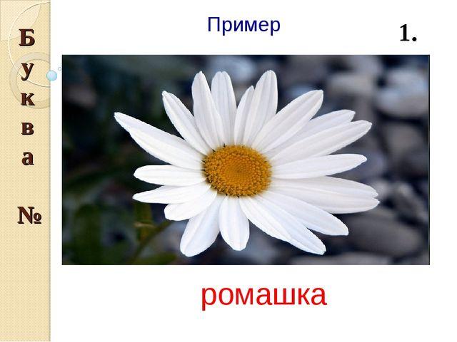 Пример ромашка Буква № 1.
