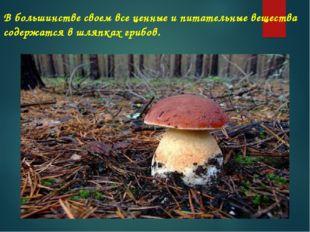 В большинстве своем все ценные и питательные вещества содержатся в шляпках гр