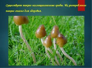 Существуют такжегаллюциногенные грибы. Их употребление также опасно для здор