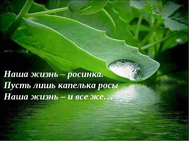 Наша жизнь – росинка. Пусть лишь капелька росы Наша жизнь – и все же…