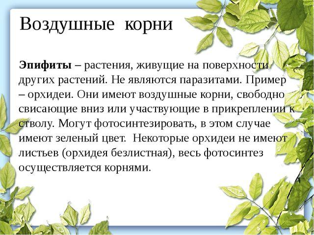 Воздушные корни Эпифиты– растения, живущие на поверхности других растений. Н...