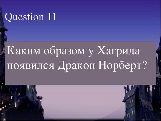 Каким образом у Хагрида появился Дракон Норберт? Question 11