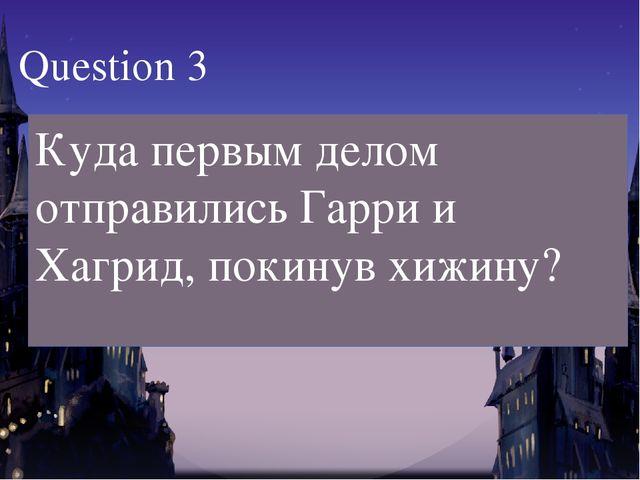 Куда первым делом отправились Гарри и Хагрид, покинув хижину? Question 3