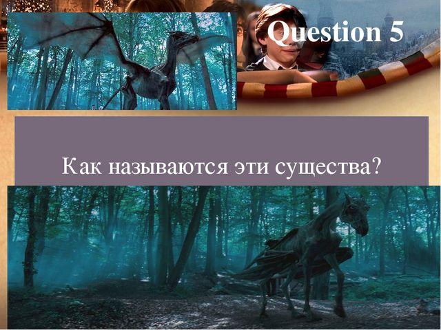 Question 5 Как называются эти существа?