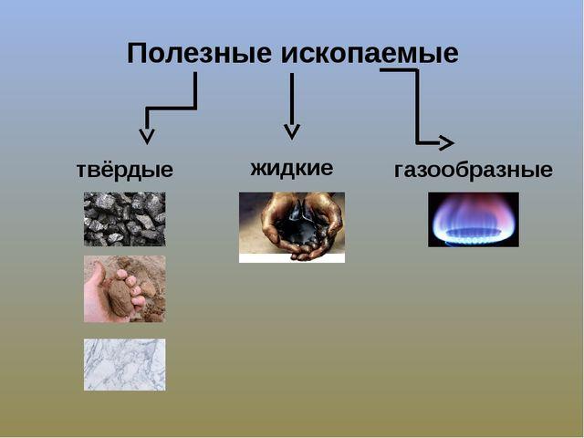 Полезные ископаемые твёрдые жидкие газообразные