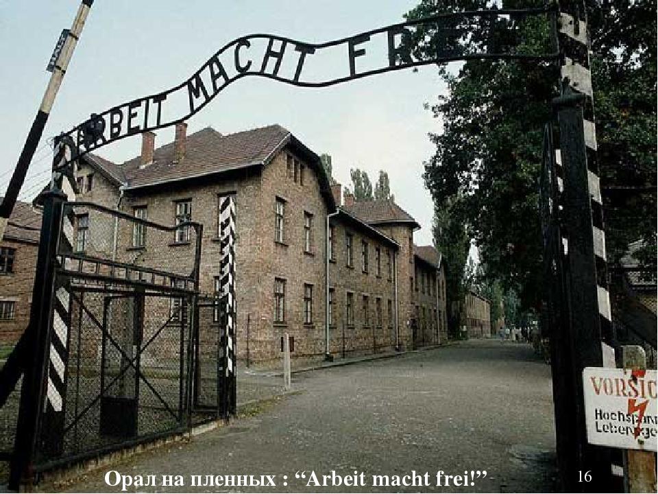 """Орал на пленных : """"Arbeit macht frei!"""""""