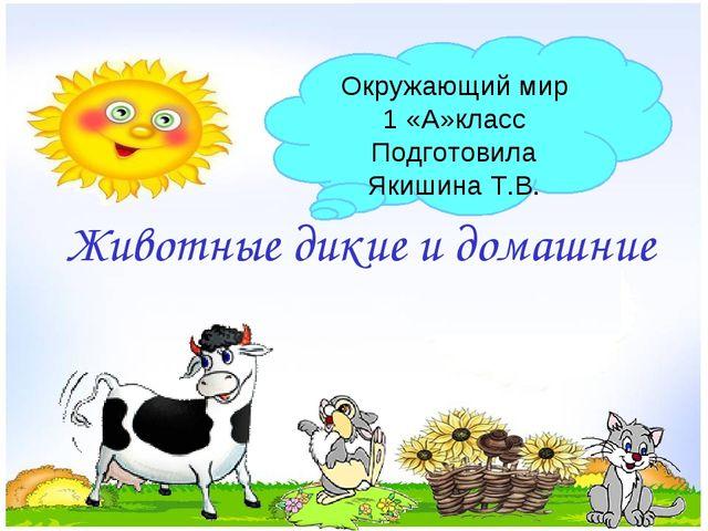 Животные дикие и домашние Окружающий мир 1 «А»класс Подготовила Якишина Т.В.