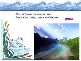 Летом бежит, а зимой спит. Весна настала, опять побежала. река