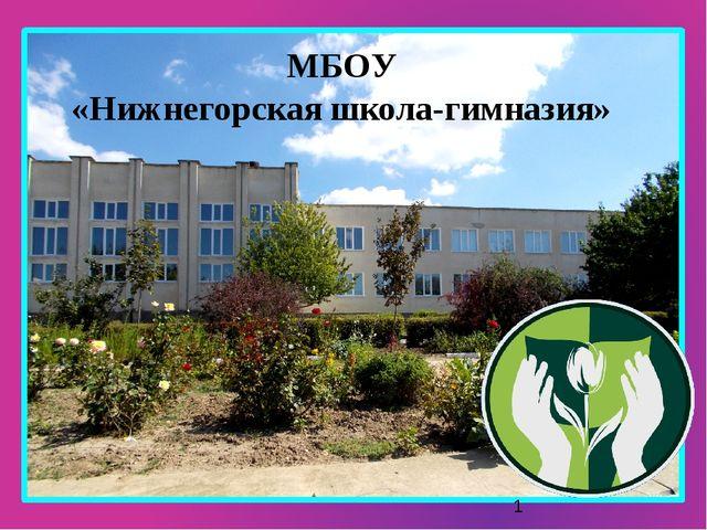 МБОУ «Нижнегорская школа-гимназия»