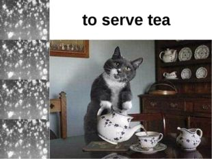 to serve tea