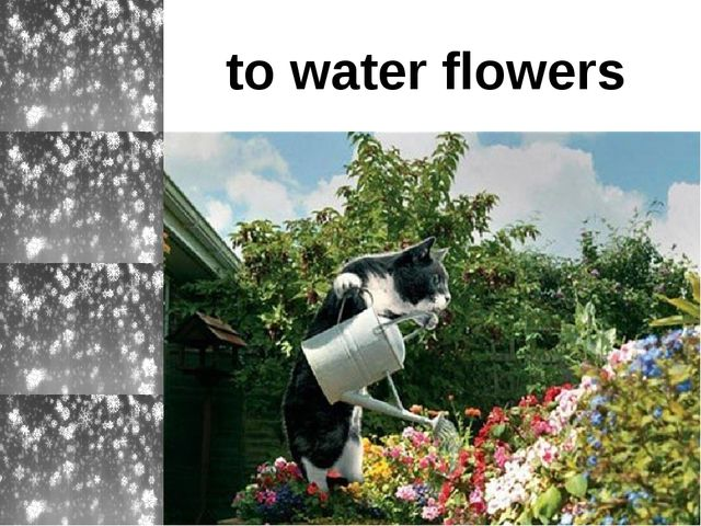 to water flowers