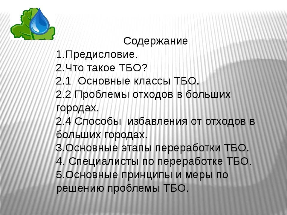 Содержание 1.Предисловие. 2.Что такое ТБО? 2.1 Основные классы ТБО. 2.2 Пробл...