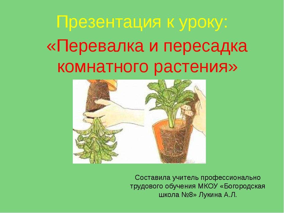 Презентация к уроку: «Перевалка и пересадка комнатного растения» Составила уч...