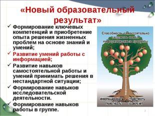 «Новый образовательный результат» Формирование ключевых компетенций и приобре