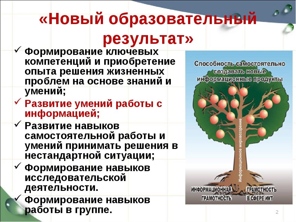 «Новый образовательный результат» Формирование ключевых компетенций и приобре...