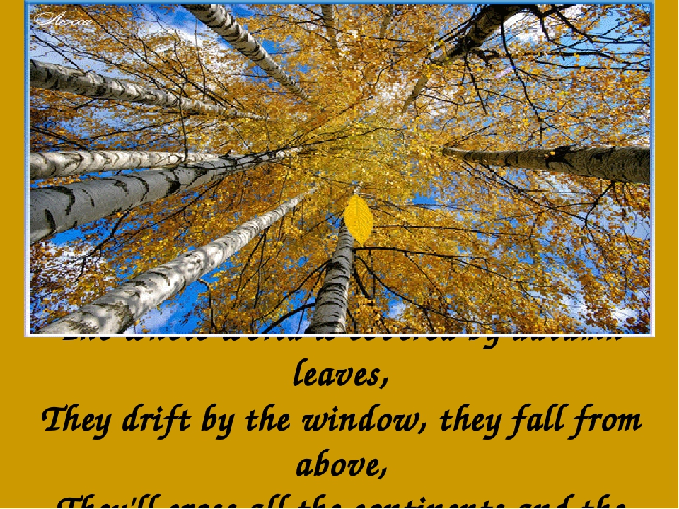 The whole world is covered by autumn leaves, They drift by the window, they f...