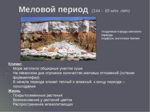 Лагерный сад. г. Томск На территории памятника хранится информацияо геологич