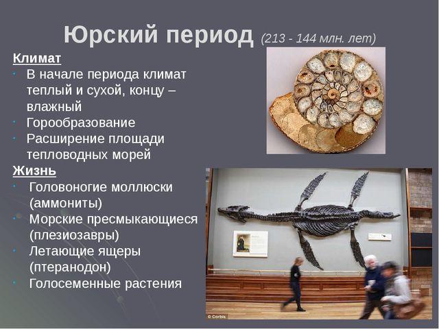 Основные события: Увеличилась численность и разнообразие морских рептилий Поя...