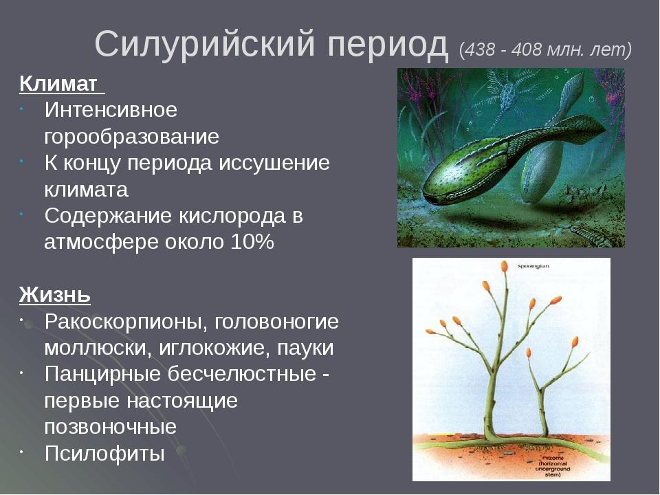 Силурийский период (438 - 408 млн. лет) Климат Интенсивное горообразование К...
