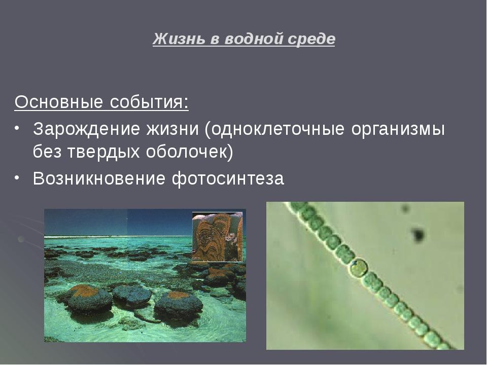Жизнь в водной среде Основные события: Зарождение жизни (одноклеточные органи...