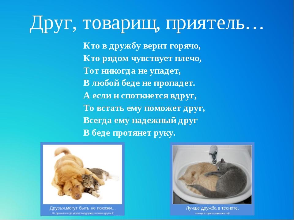 Друг, товарищ, приятель… Кто в дружбу верит горячо, Кто рядом чувствует плечо...