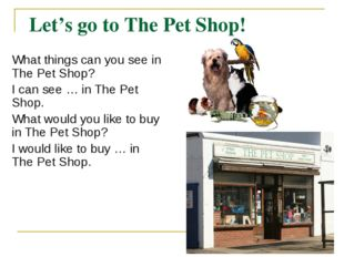 Let's go to The Pet Shop! What things can you see in The Pet Shop? I can see