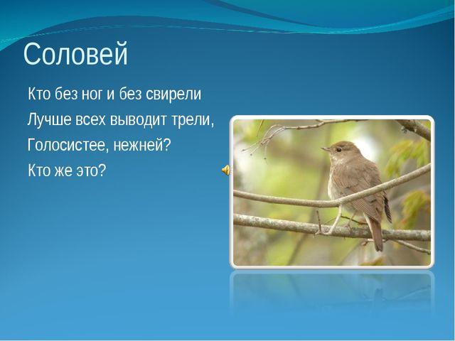Соловей Кто без ног и без свирели Лучше всех выводит трели, Голосистее, нежне...