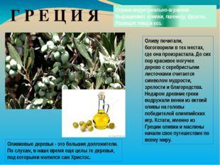 Г Р Е Ц И Я Страна индустриально-аграрная. Выращивают оливки, пшеницу, фрукты