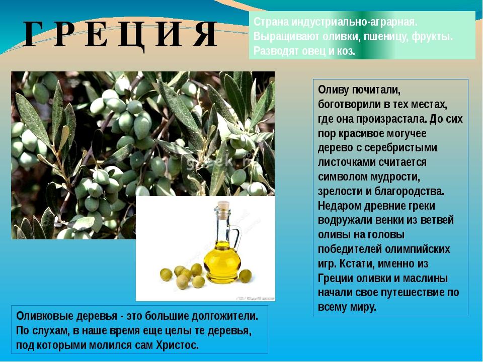 Г Р Е Ц И Я Страна индустриально-аграрная. Выращивают оливки, пшеницу, фрукты...