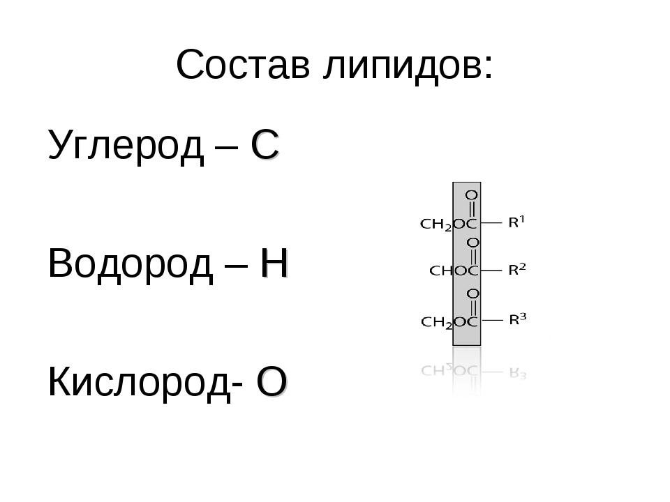 Состав липидов: Углерод – C Водород – H Кислород- O