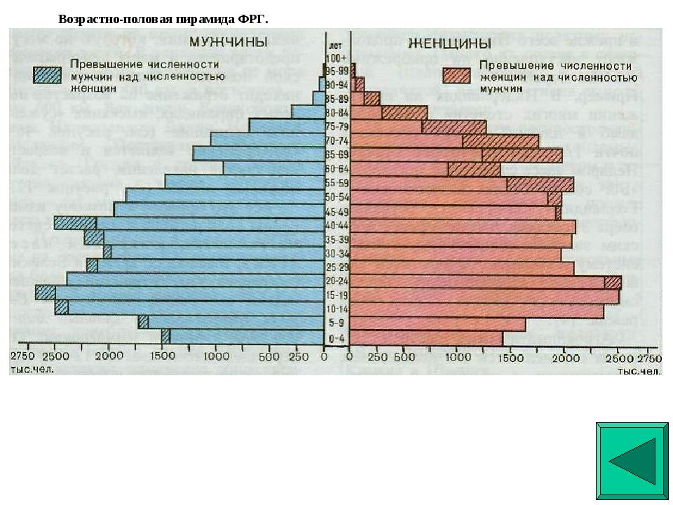 Возрастно-половая пирамида ФРГ. Возрастно-половая пирамида ФРГ.