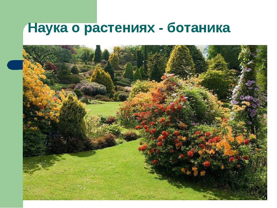 Наука о растениях - ботаника