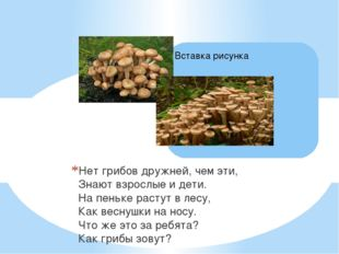 Нет грибов дружней, чем эти, Знают взрослые и дети. На пеньке растут в лесу,