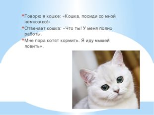 Говорю я кошке: «Кошка, посиди со мной немножко!» Отвечает кошка: «Что ты! У