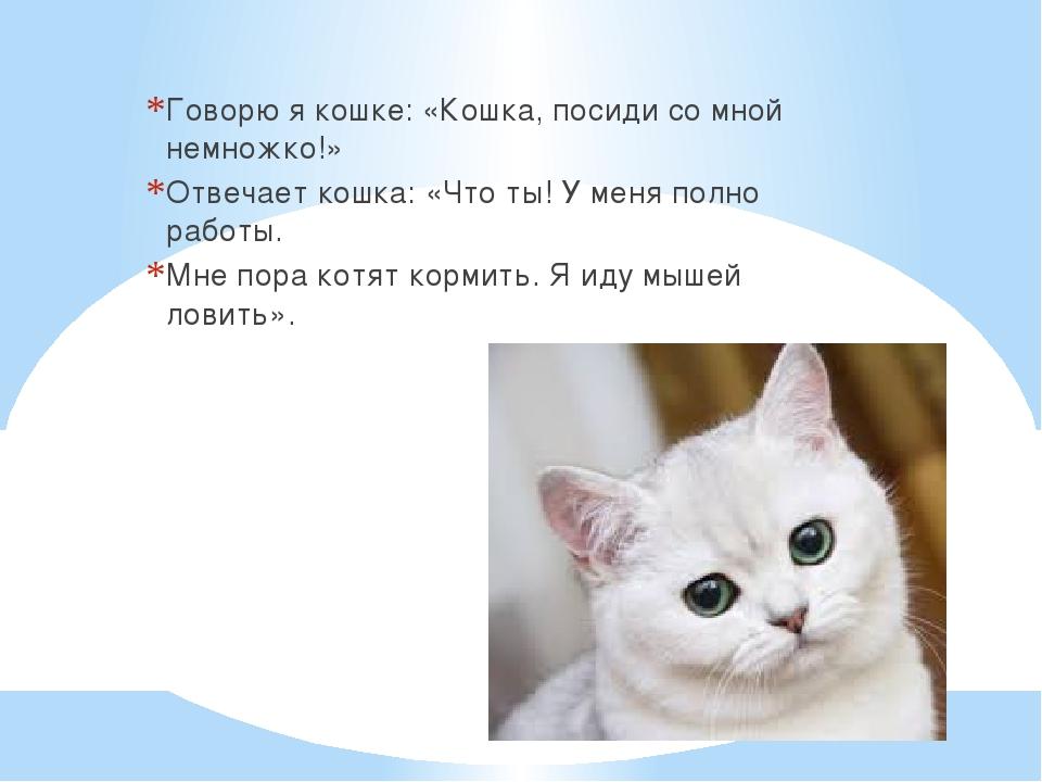 Говорю я кошке: «Кошка, посиди со мной немножко!» Отвечает кошка: «Что ты! У...