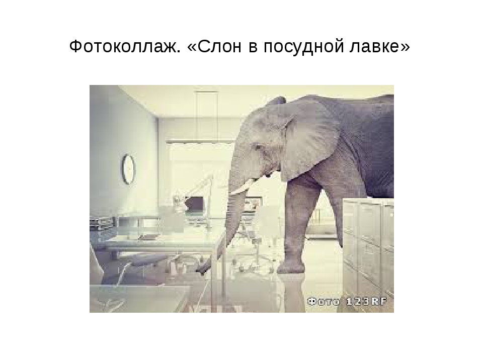 Фотоколлаж. «Слон в посудной лавке»