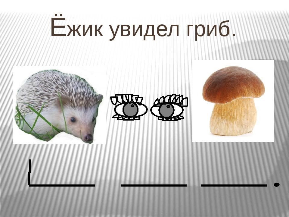 Ёжик увидел гриб.