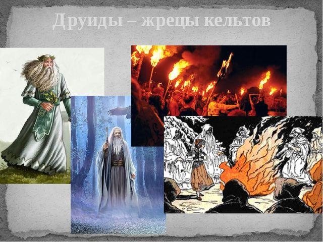 Друиды – жрецы кельтов