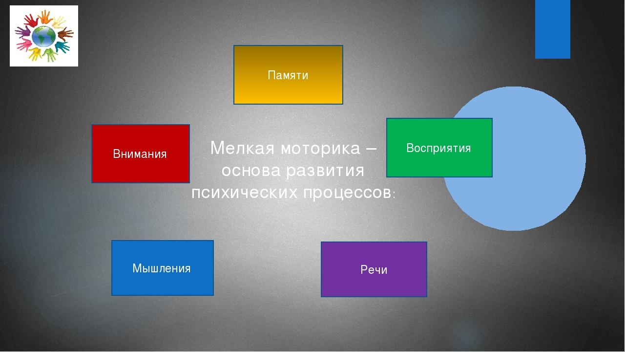 Мелкая моторика – основа развития психических процессов: Памяти Восприятия Ре...