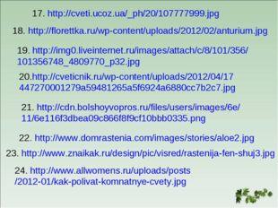 17. http://cveti.ucoz.ua/_ph/20/107777999.jpg 18. http://florettka.ru/wp-cont