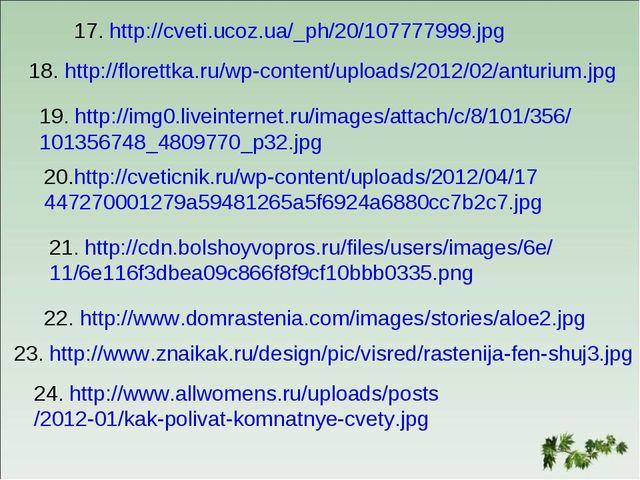17. http://cveti.ucoz.ua/_ph/20/107777999.jpg 18. http://florettka.ru/wp-cont...