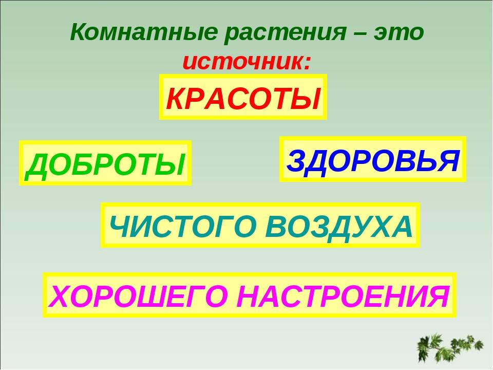 Комнатные растения – это источник: КРАСОТЫ ДОБРОТЫ ЗДОРОВЬЯ ЧИСТОГО ВОЗДУХА Х...